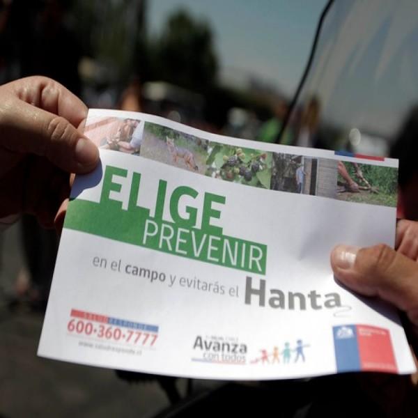VIRUS HANTA EN PALENA - PLAGASUR® | Control de Plagas en Puerto Montt - Puerto Varas - Osorno - Castro