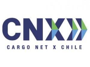CNX - PLAGASUR® | Porque es tu casa y NO la de ellos! | Sanitización · Desratización · Desinsectación · Control de palomas y murciélagos · Valdivia - Puerto Montt - Puerto Varas - Osorno - Castro