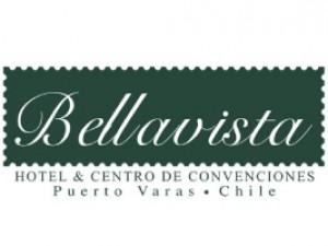 Hotel Bellavista - PLAGASUR® | Porque es tu casa y NO la de ellos! | Sanitización · Desratización · Desinsectación · Control de palomas y murciélagos · Valdivia - Puerto Montt - Puerto Varas - Osorno - Castro