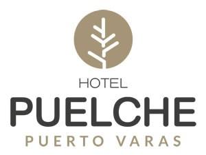Hotel Puelche - PLAGASUR® | Control de Plagas en Puerto Montt - Puerto Varas - Osorno - Castro