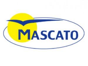 Mascato - PLAGASUR® | Porque es tu casa y NO la de ellos! | Sanitización · Desratización · Desinsectación · Control de palomas y murciélagos · Valdivia - Puerto Montt - Puerto Varas - Osorno - Castro