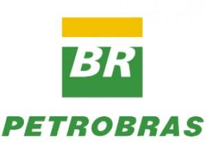 Petrobras - PLAGASUR® | Porque es tu casa y NO la de ellos! | Sanitización · Desratización · Desinsectación · Control de palomas y murciélagos · Valdivia - Puerto Montt - Puerto Varas - Osorno - Castro