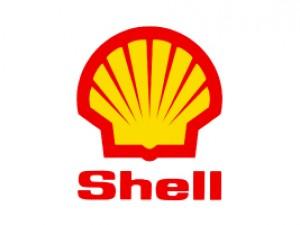 Shell - PLAGASUR® | Porque es tu casa y NO la de ellos! | Sanitización · Desratización · Desinsectación · Control de palomas y murciélagos · Valdivia - Puerto Montt - Puerto Varas - Osorno - Castro