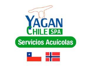 Yagan Chile - PLAGASUR® | Control de Plagas en Puerto Montt - Puerto Varas - Osorno - Castro