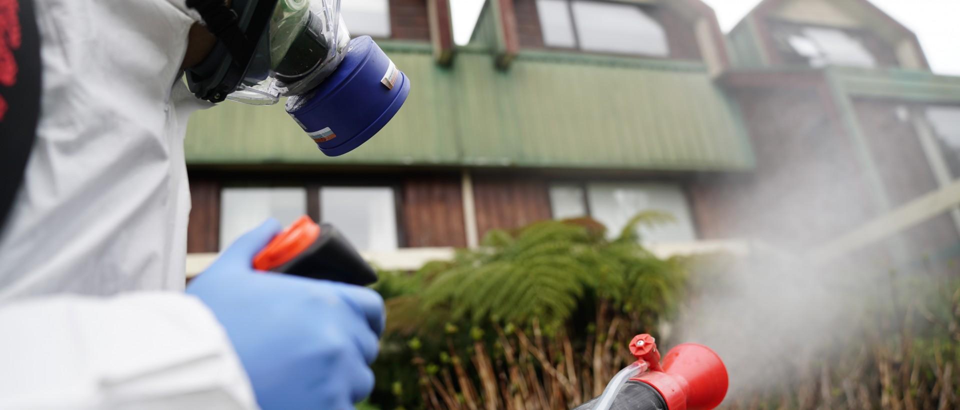 PLAGASUR® | Control de Plagas en Puerto Montt - Puerto Varas - Osorno - Castro | Desinsectación