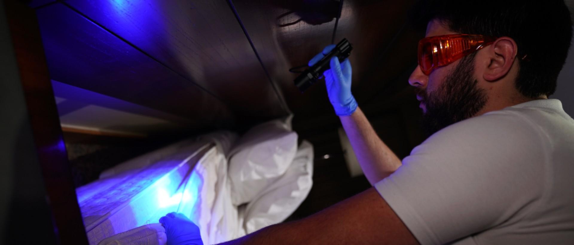 PLAGASUR® | Control de Plagas en Puerto Montt - Puerto Varas - Osorno - Castro | Erradicación de chinches de cama