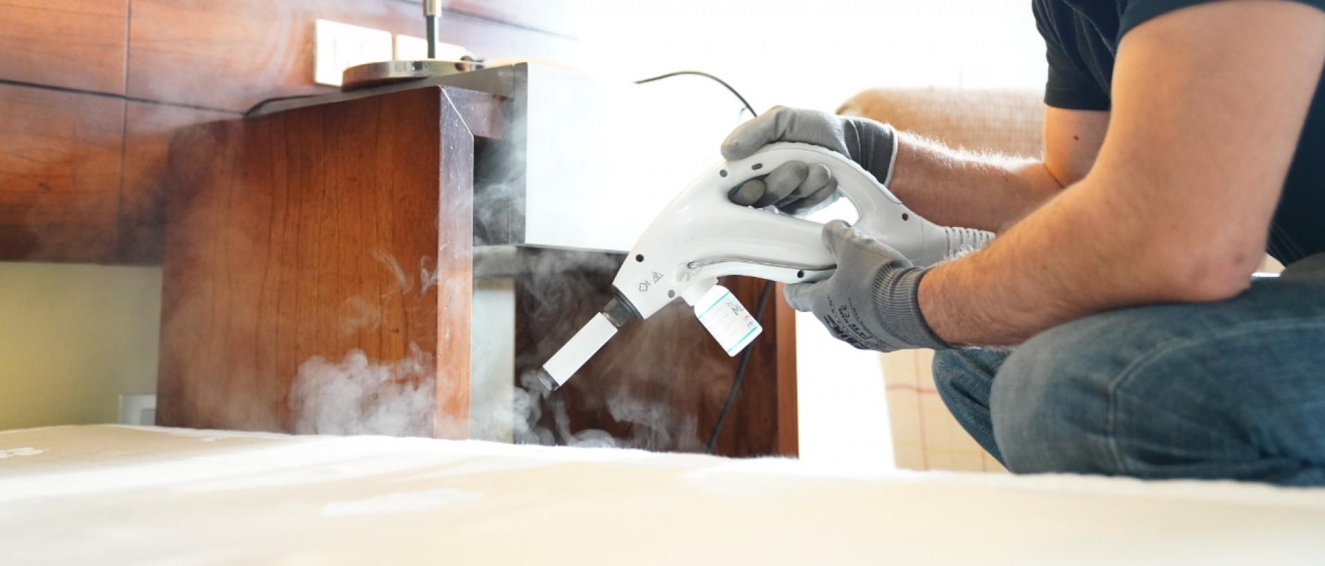 PLAGASUR® | Porque es tu casa y NO la de ellos! | Sanitización · Desratización · Desinsectación · Control de palomas y murciélagos · Valdivia - Puerto Montt - Puerto Varas - Osorno - Castro | Limpieza y desinfección