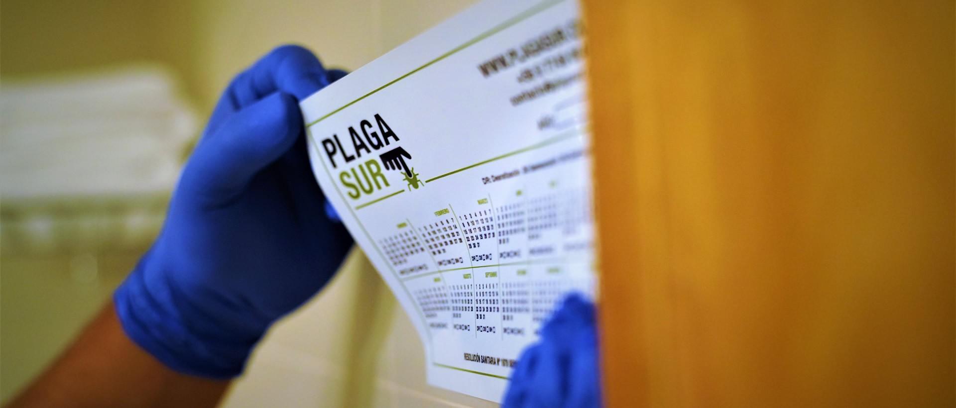PLAGASUR® | Control de Plagas en Puerto Montt - Puerto Varas - Osorno - Castro | Sanitización